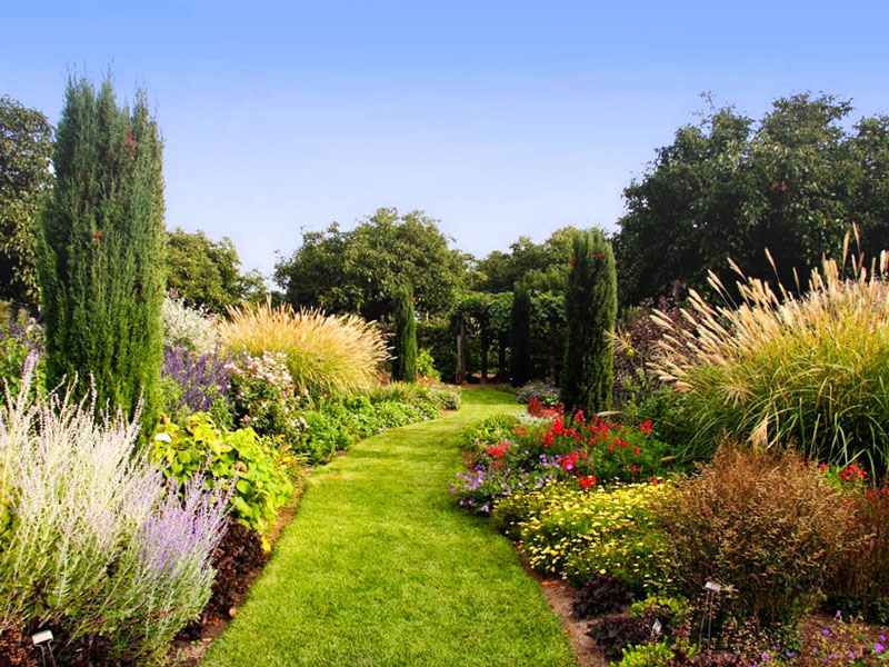 landscape with colorful flower and shrub planting