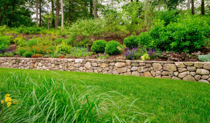 Medfield MA stone wall landscape