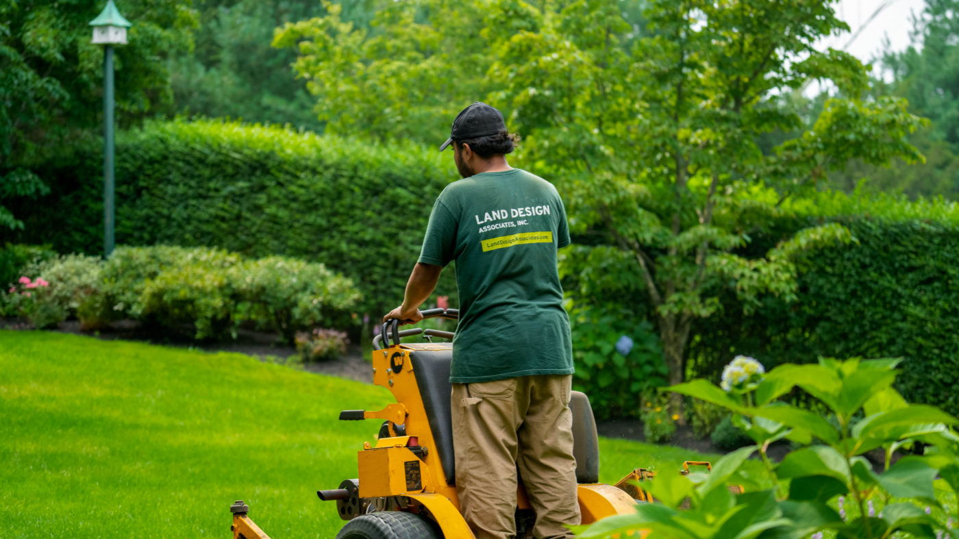 lawncare for backyard maintenance