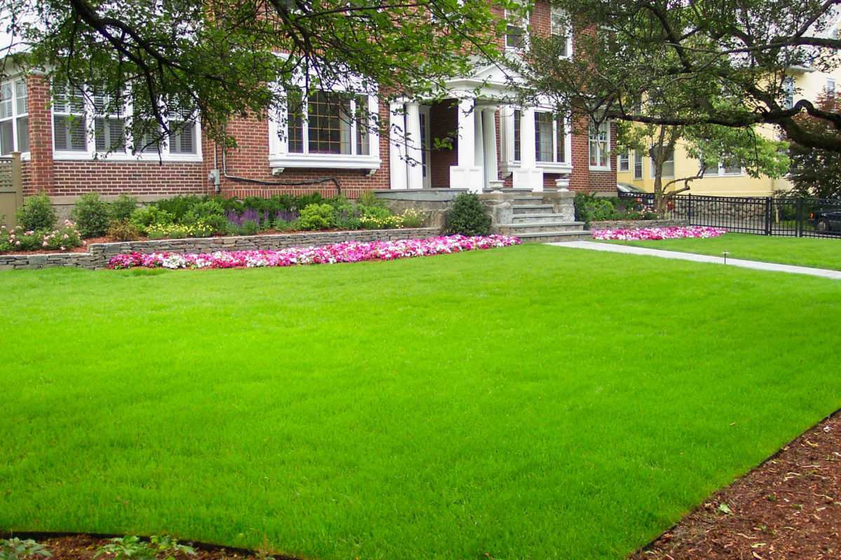 front lawn with flower beds and paved walkway