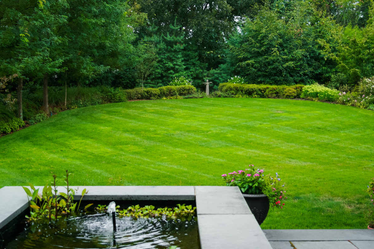 backyard lawn care for boston home