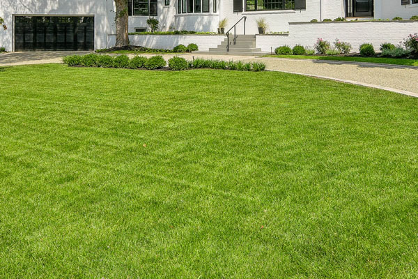 lawn installation for chestnut hill property