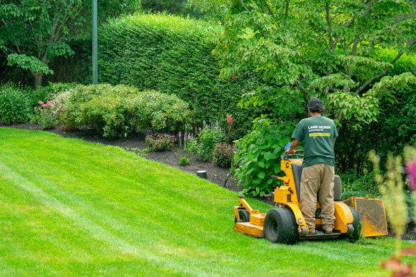 lawncare for boston property